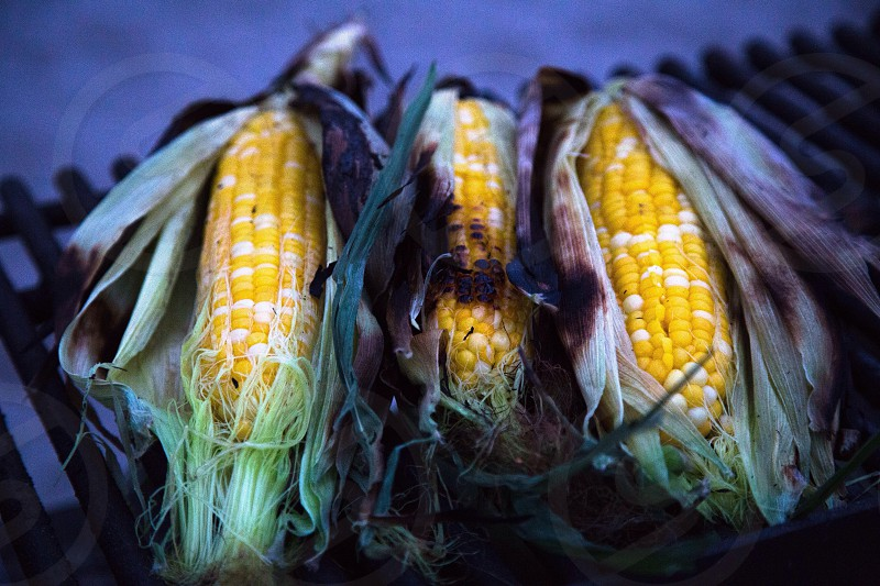 Grilled Corn on the Beach photo