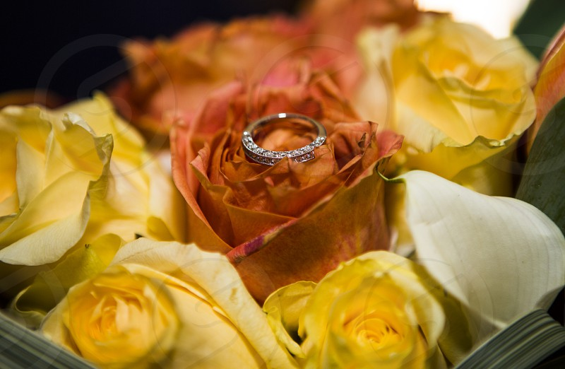 Ring and flower photo