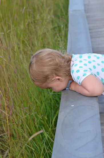 Toddler in polka dot shirt looking over bridge for ducks. photo
