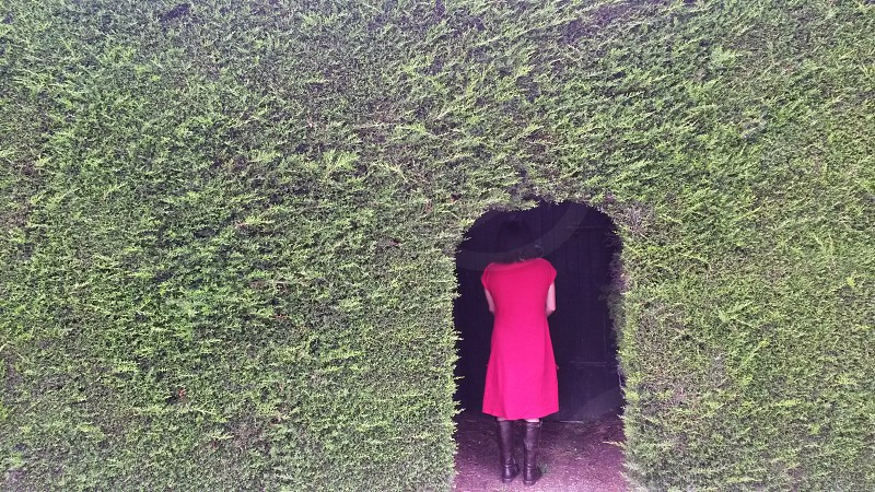 Woman in a red dress in a green hedge photo