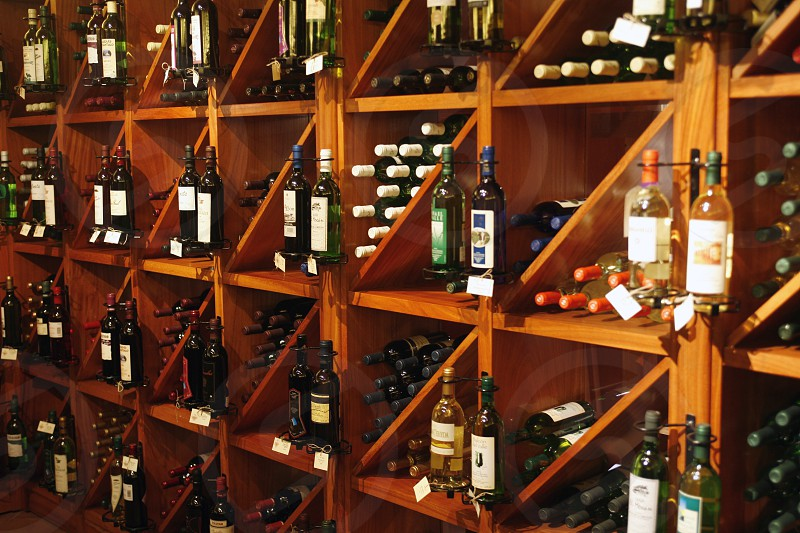 a wine Shop of the City of Santa Cruz on the Island of Tenerife on the Islands of Canary Islands of Spain in the Atlantic.   photo