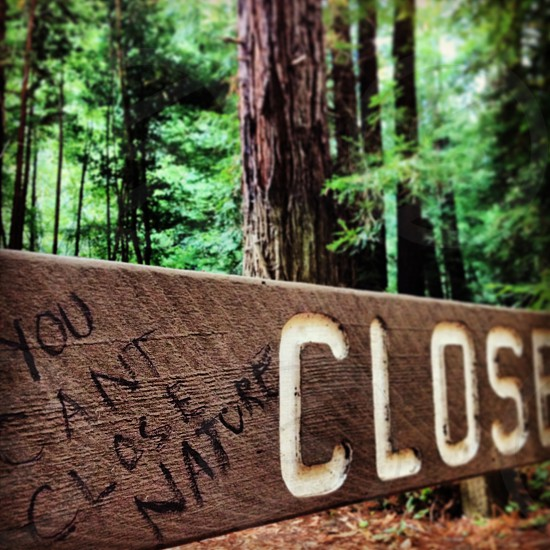 """You can't close nature"" written on a ""Closed Park"" sign photo"