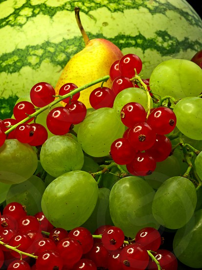 fresh fruits on a table photo