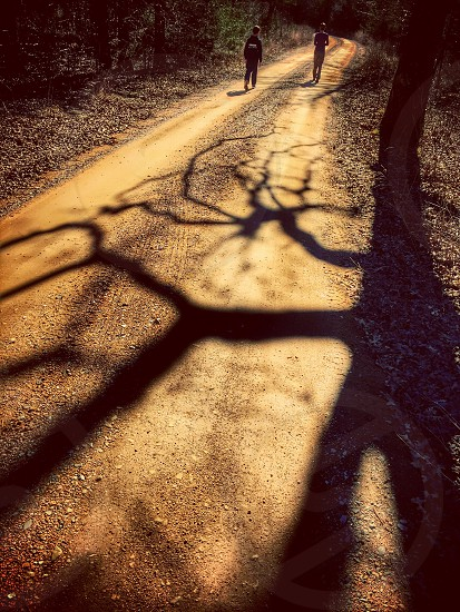 Dirt road country road shadows photo