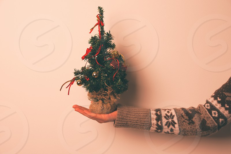 Miniature Christmas Tree with Red Decoration in Hand Closeup photo
