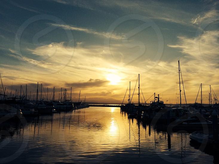 Shilshole Marina Seattle WA photo