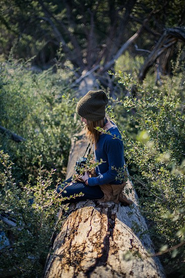 Girl with Hasselblad in nature.  photo