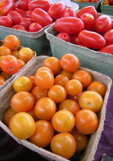 Sungold small tomatoes in farmers market carton photo