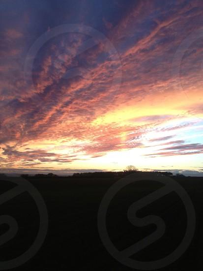 Red Sky Shepherds Delight photo
