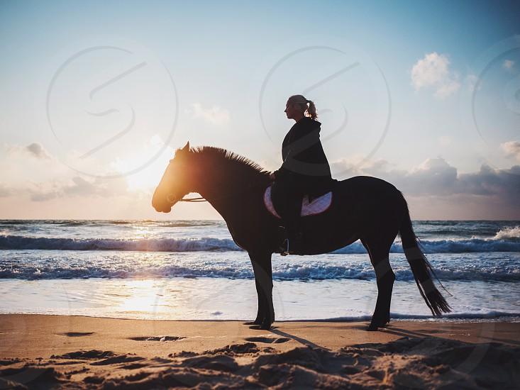 shof of woman sitting on black horse at sea beach. Beautiful woman wearing black clothing enjoying sunrise morning close to ocean water. photo