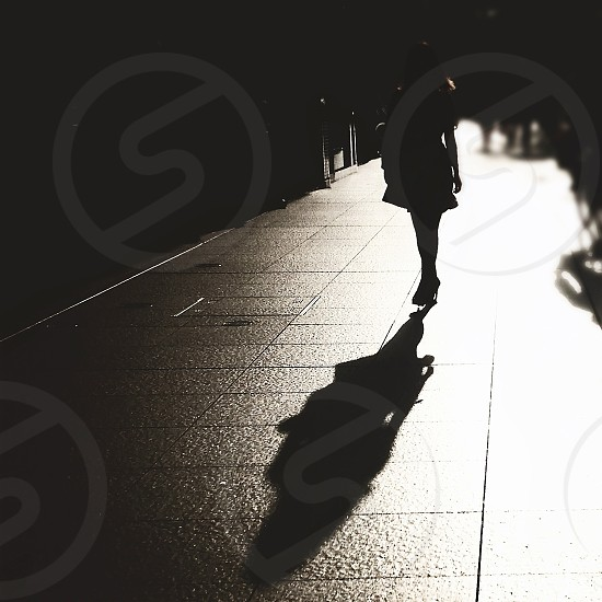 woman's silhouette  photo