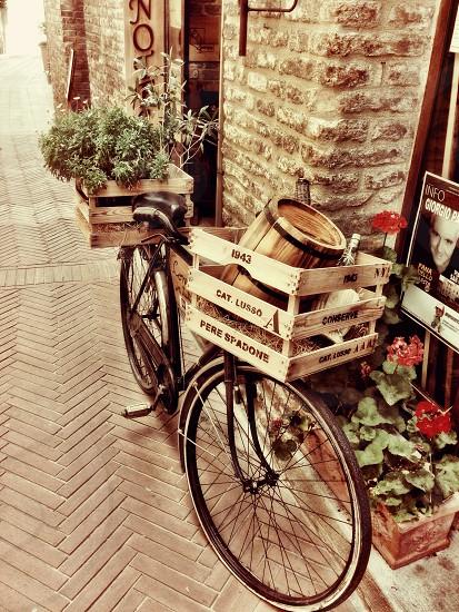 Bicycle lifestyle  photo