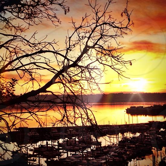 Tacoma Sunset photo