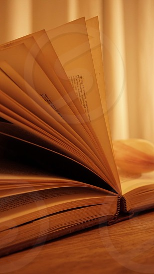 opened book on wooden table beside curtains photo