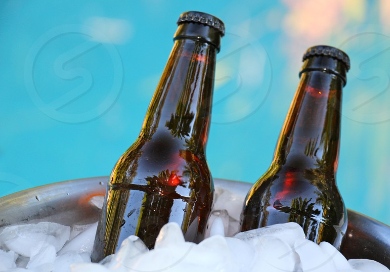 two brown glass bottles in bucket with ice photo