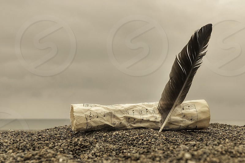 musical sheet and feather on sand photo