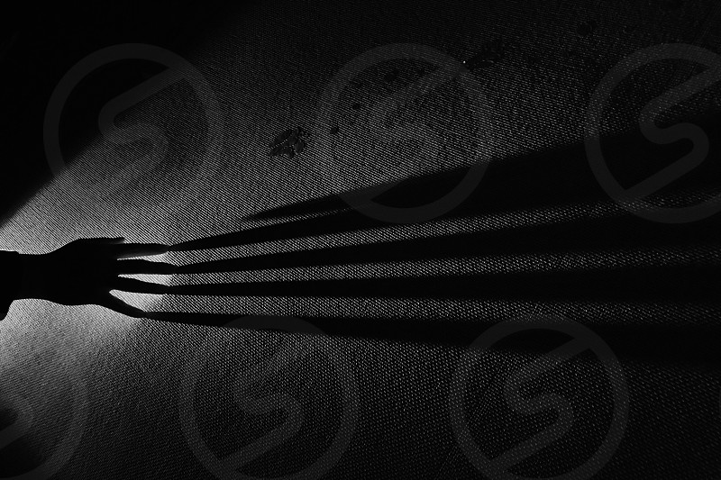 Spooky Halloween black and white light shadows photo