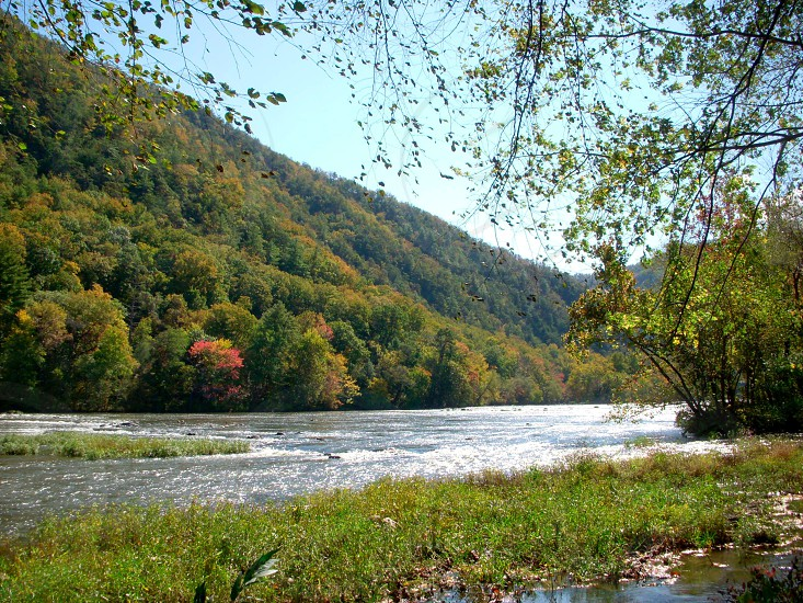 French Broad river campsite.  photo