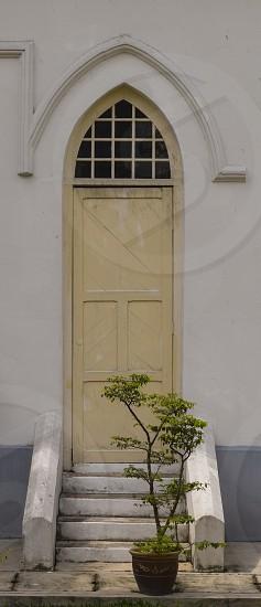 door color palette photo
