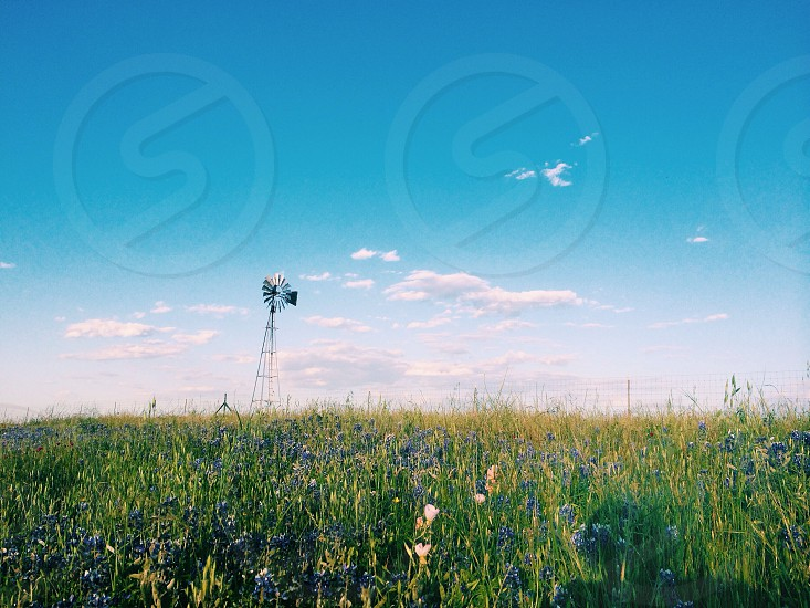 green field with windmill photograph photo