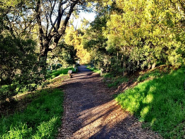 #nature #fremont #california #greenery photo
