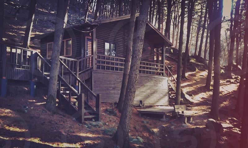 Cottage at the mountain treespeacefulcottage photo