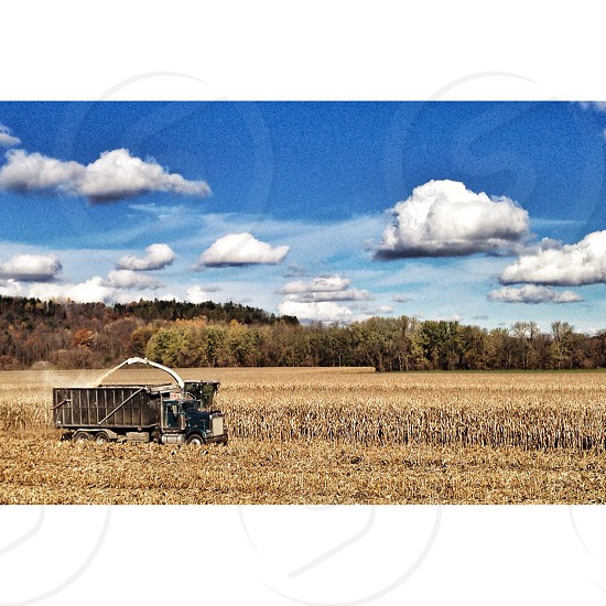 Harvest. Harvest corn truck harvester fall foliage brown tan food farming transportation hunger  photo