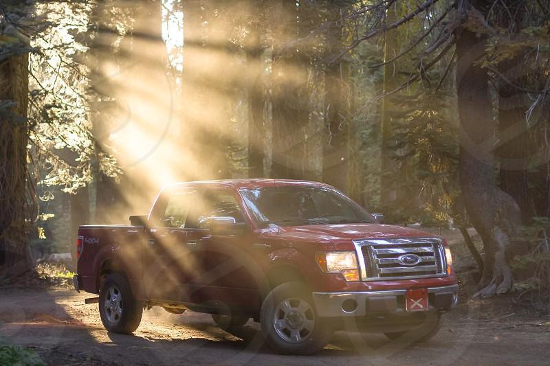 Truck Ford F150 golden hour light rays forest nature 4x4 off-road  photo