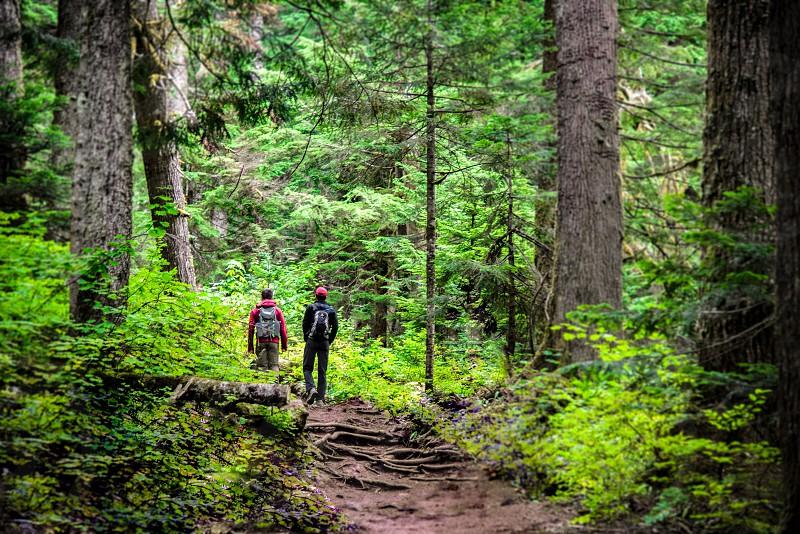 Hiking near Snoqualmie Pass Washington State photo