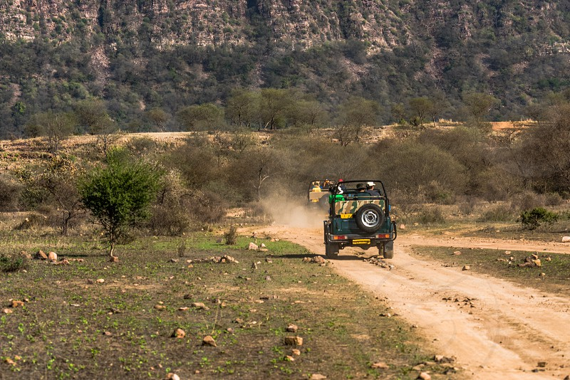 Ranthambore National Park Sawai Madhopur photo