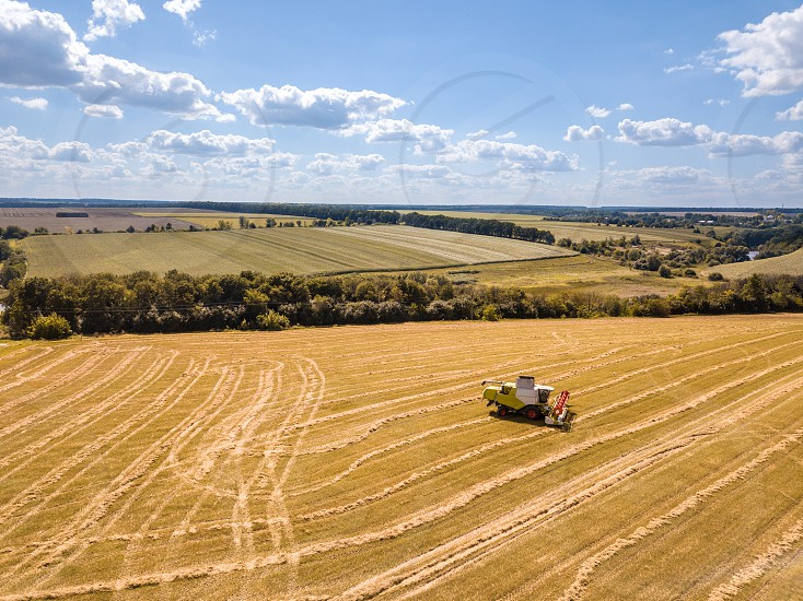 Aerial view from drone to harvest of wheat crops by agricultural combines in a sunny summer day on a background of blue sky. photo