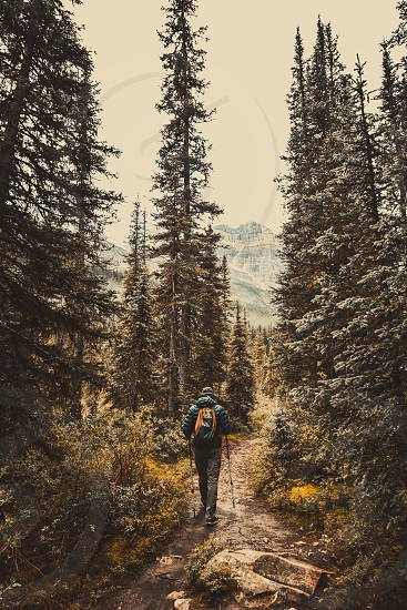 Hiker on the trail photo