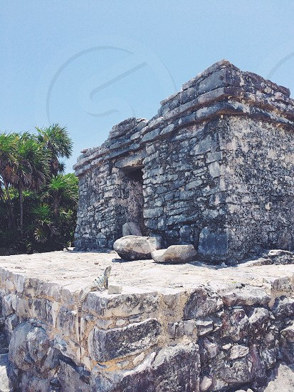 An iguana sitting on a pre-Columbian Maya ruin which was part of a walled city serving as a major port for Cobá. The ruins are situated on 12 meter (39 feet) tall cliffs along the east coast of the Yucatán Peninsula on the Caribbean Sea in the state of Quintana Roo Mexico.  photo
