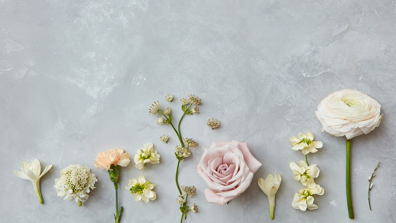 Composition of different flowers represented on grey background. Copy space may be used for your ideas emotions concepts. Valentine's Day concept. photo