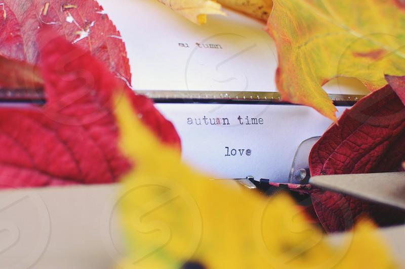 Typewriter strewn with autumn leaves. photo