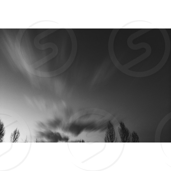 time lapse of a clouds above the trees at grayscale photo photo