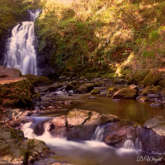 waterfalls in the forest  photo