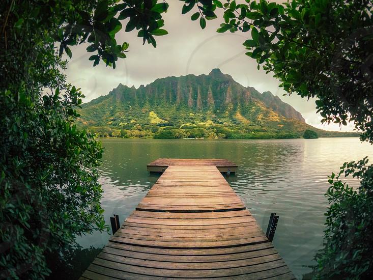 Hawaii pier  photo
