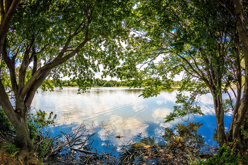 Cooper River photo