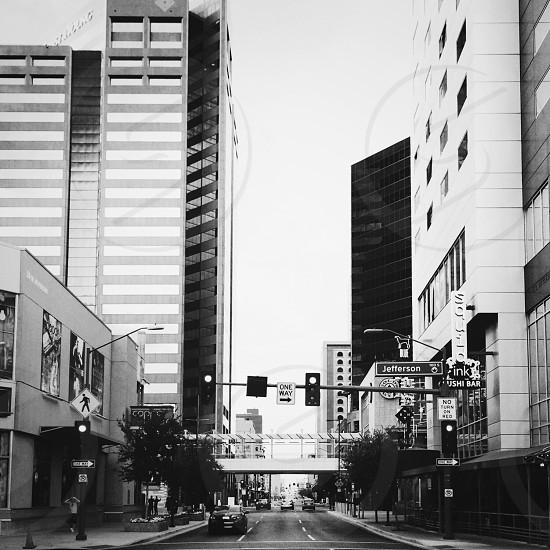Phoenix in black and white. photo
