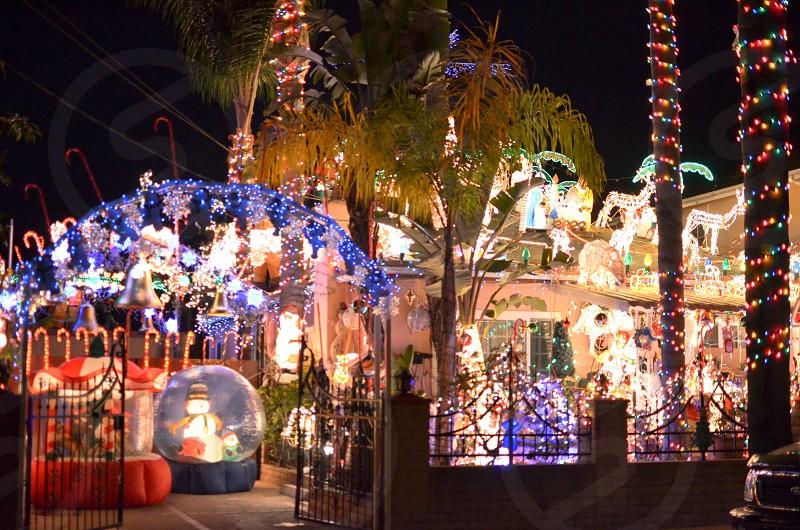 christmas lights holidays photo
