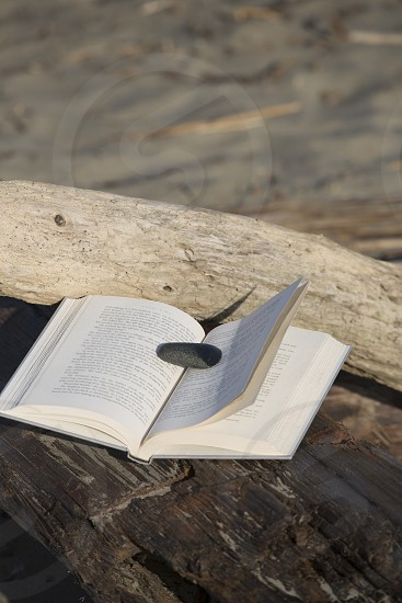 Book with single rock as bookmark on driftwood. photo
