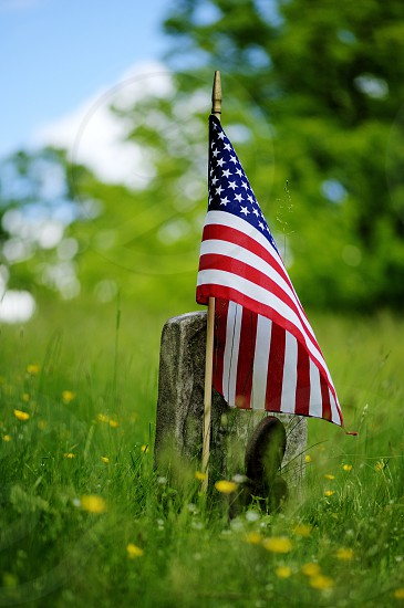 american flag standing in green grass field photo