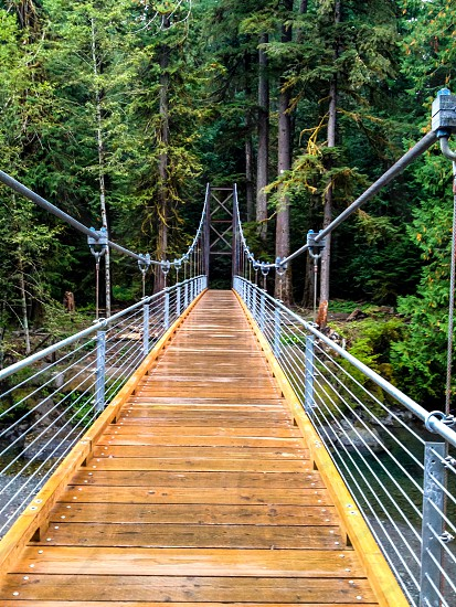 A bridge along Staircase in the Olympic National Forest photo