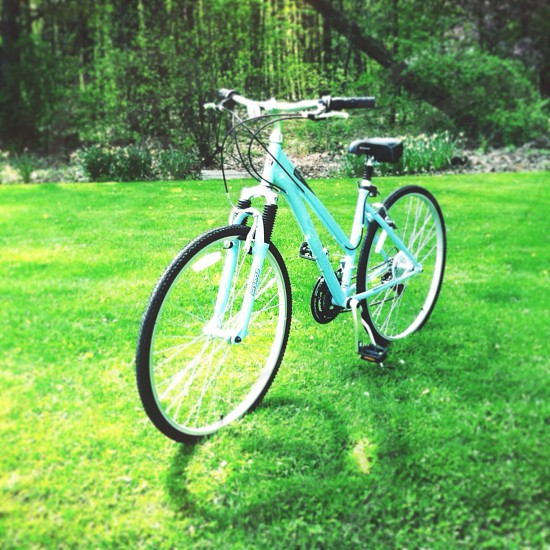 blue bicycle in the garden photography photo