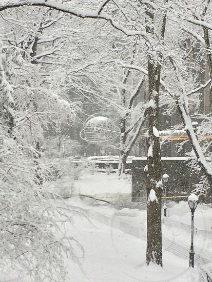Central Park snow winter Globe photo