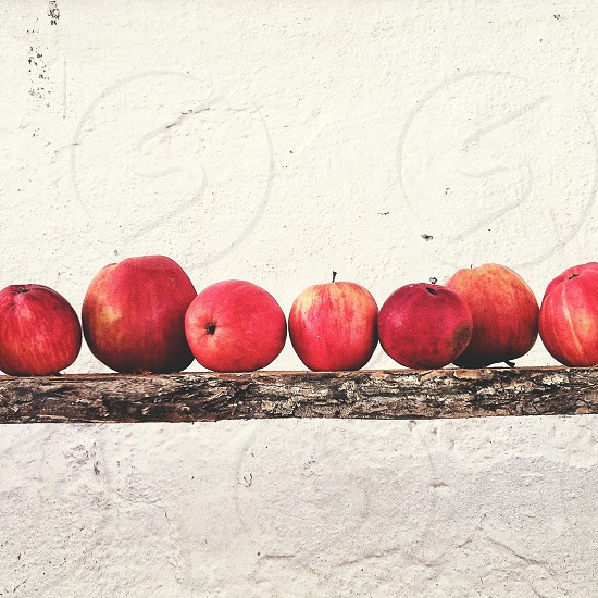 7 red apples photo