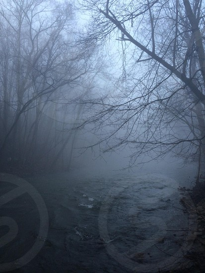 Foggy creek photo