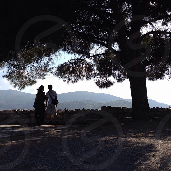 man and woman standing beside tall tree photo
