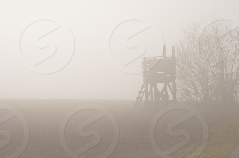 hunting stand with morning fog photo